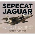 SEPECAT JAGUAR-ALMOSTE EXTINCT