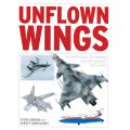 UNFLOWN WINGS : SOVIET/RUSSIAN UNREALISED AIRCRAFT