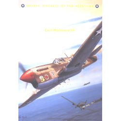 P-40 WARHAWK ACES OF MTO                   ACES 43