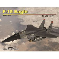 F-15 EAGLE IN ACTION                      SS 10247