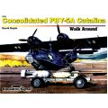 CONSOLIDATED PBY-5A CATALINA      WALK AROUND 5560